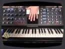 Démonstration des possibilités sonores du Minimoog Voyager de Moog Music.